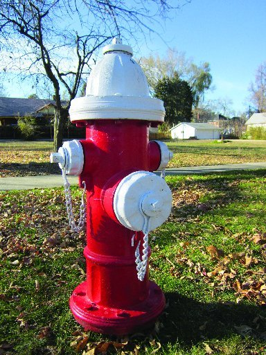 Private Hydrant Red