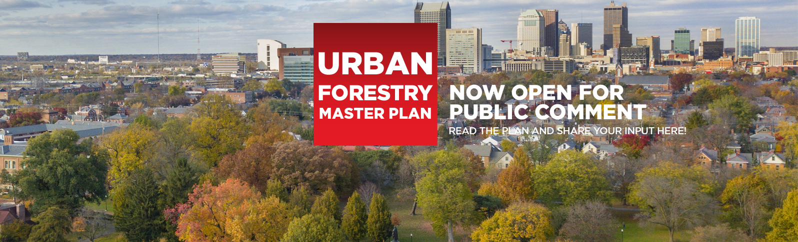 Urban Forestry Master Plan