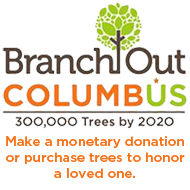 Branch Out Columbus Donation Tile