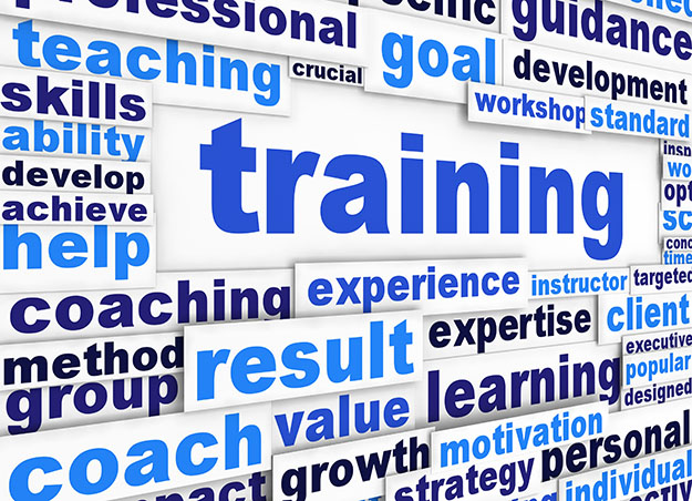 Image result for team training images