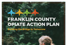 Opiate Community Action Plan