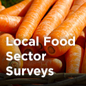 FoodSurveys