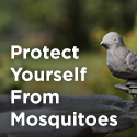 MosquitoProtectionIcon