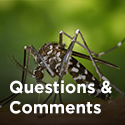 MosquitoQuestions