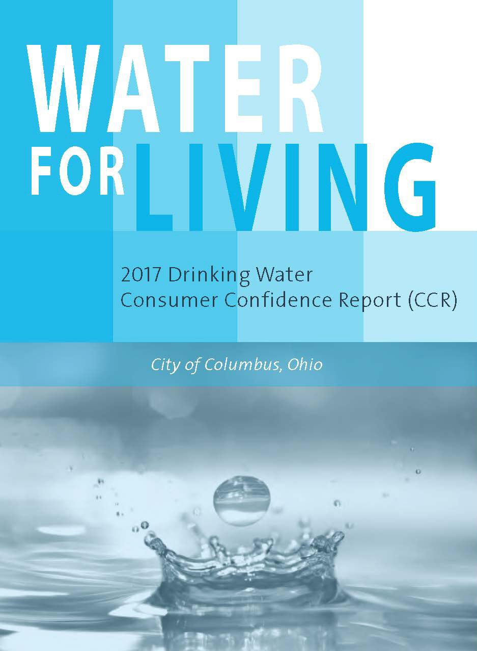 Drinking Water Consumer Confidence Report