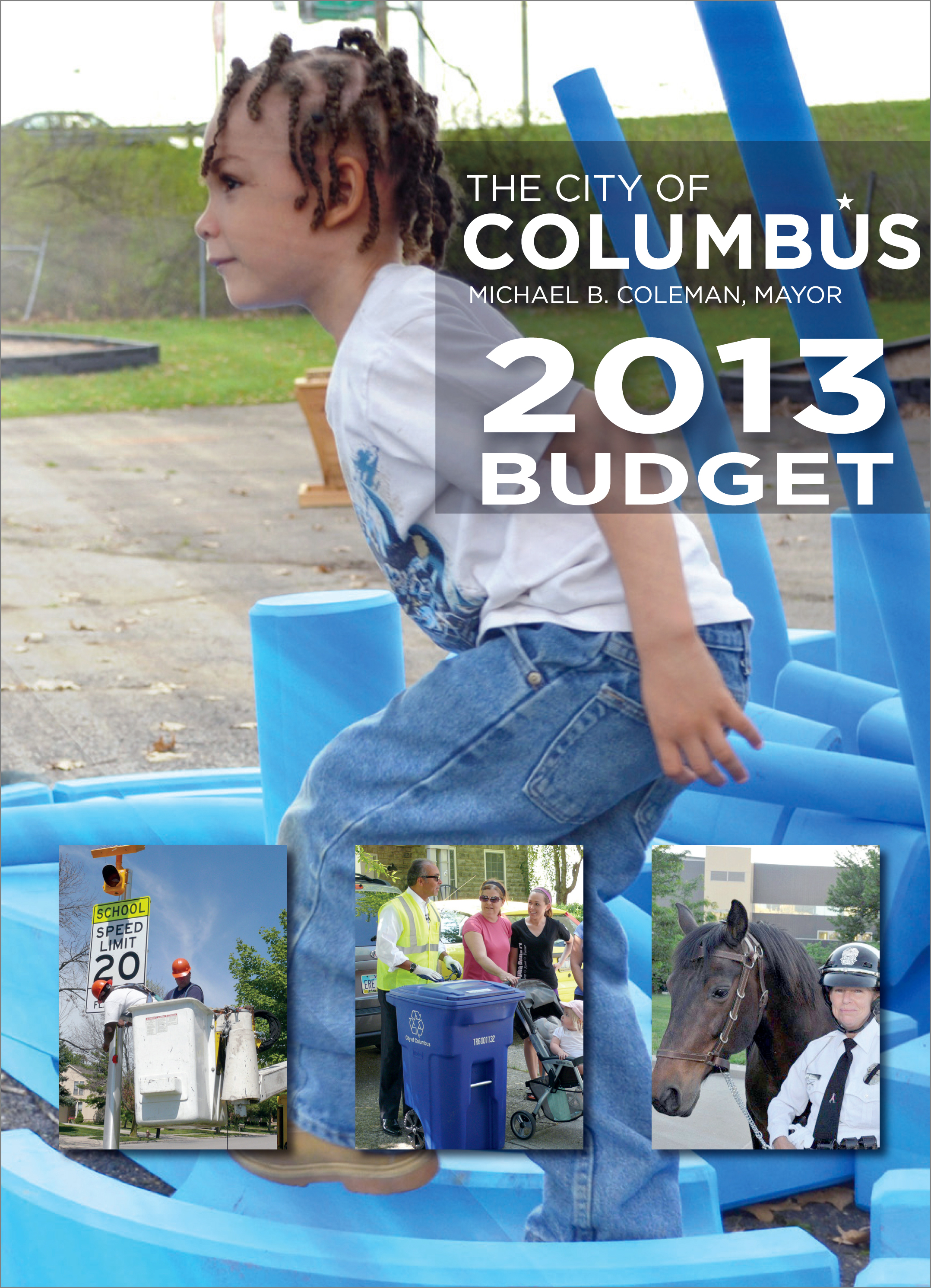 Budget Cover 2013
