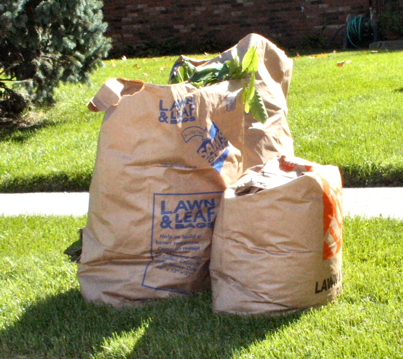 Yard Waste Disposal